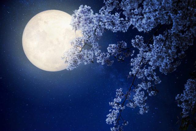 Lune de fiel - 2 2