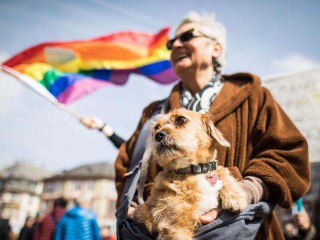 Zusammen mit ihrem Hund nimmt eine Frau an der Abschlusskundgebung auf dem Frankfurter Römerberg teil. Foto: Frank Rumpenhorst/dpa