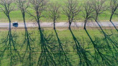 Ein Frühlingswind – Von Rainer Maria Rilke