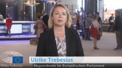 EU-Abgeordnete Trebesius: Italien steuert in die Zahlungsunfähigkeit