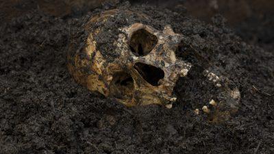 Dänemark: Tausende Knochen von Germanen entdeckt – und es waren nicht die Römer