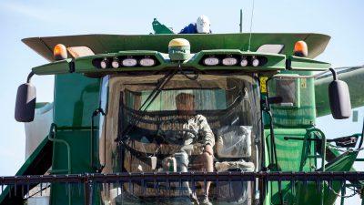 Südafrikas Buren wollen dem Tod entgehen – Russland bietet Umsiedlung an