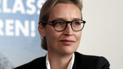 Weidel will Renten und Einkünfte bis 2.000 Euro steuerfrei machen