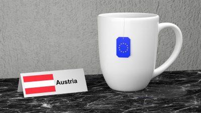 """Österreich übernimmt EU-Ratsvorsitz unter dem Motto """"Ein Europa, das schützt"""" – Boote wieder zurück nach Afrika bringen"""
