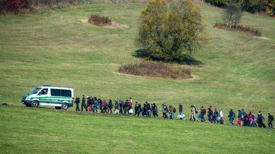"""Ex-Verfassungsrichter: Migranten an Grenze zurückweisen """"zwingend geboten"""""""