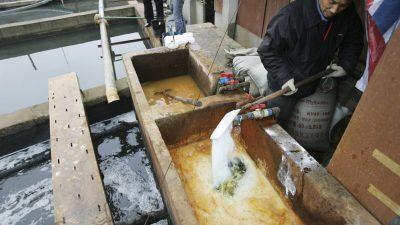 Billigklamotten: Chemikalien bei Herstellung verursachen massive Umweltschäden – Greenpeace prangert Konsumwut an