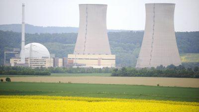 """""""Kampf gegen Klimawandel nur mit Kernenergie zu gewinnen"""""""