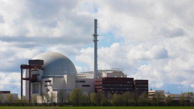 Wegen Hitzewelle müssen einige Atomkraftwerke ihre Leistung herunterfahren