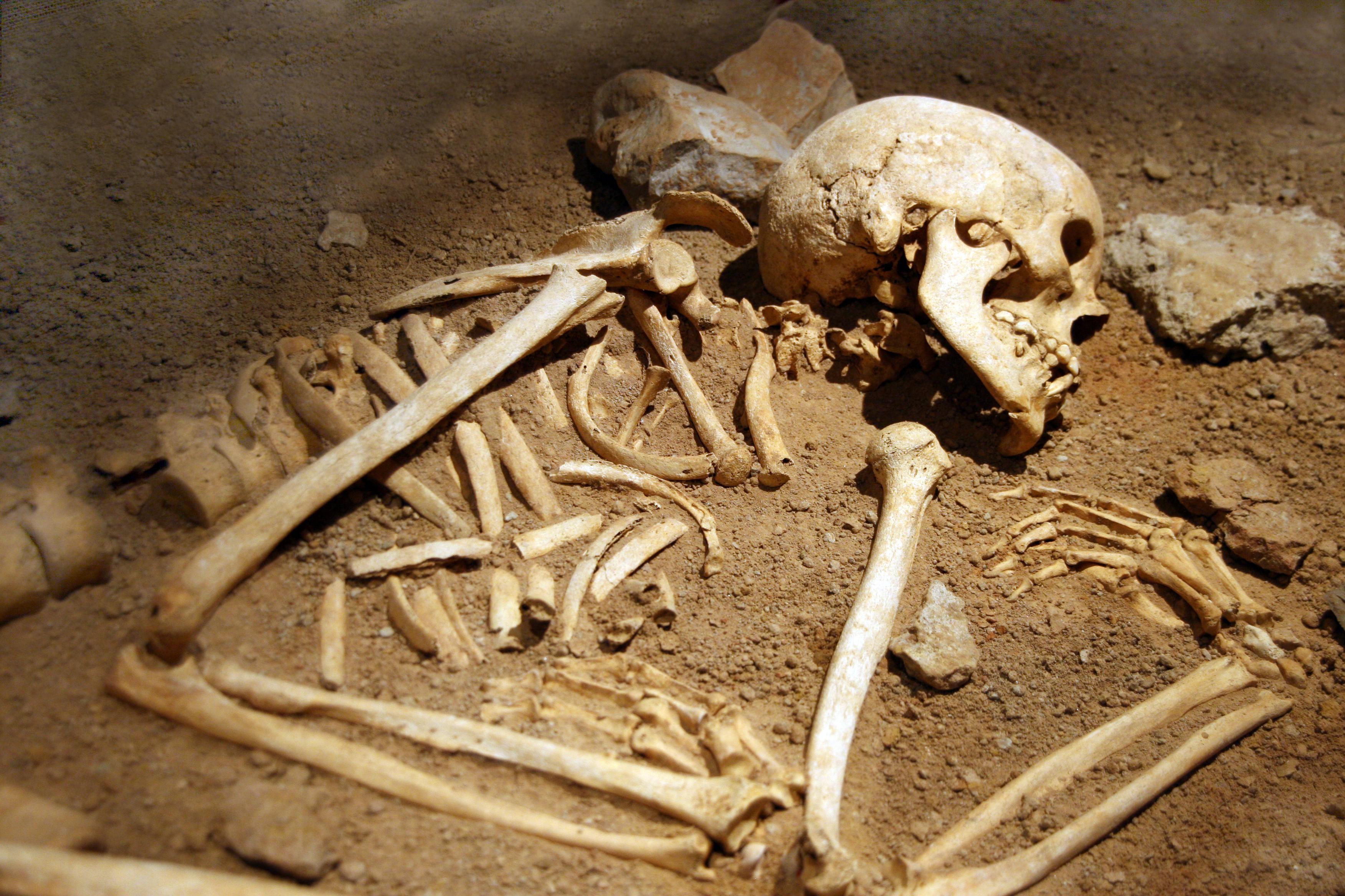 MPI-Forscher isolieren erstmals Neandertaler-DNA aus Höhlensedimenten