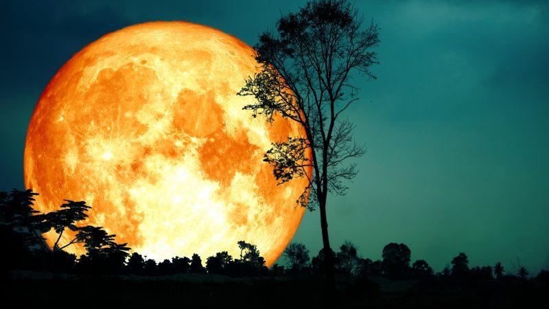 Livestream Die Längste Mondfinsternis Des Jahrhunderts Uhrzeiten