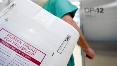 Unethisches Organspendesystem: Familien lassen kranke Angehörige verhungern – und verkaufen ihre Organe
