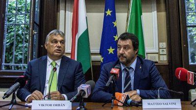 Orban und Salvini planen eine Allianz der Anti-Einwanderungs-Parteien in Europa