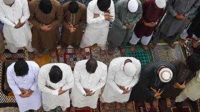 """Islamkritiker schlagen Alarm: """"The Muslim Story""""–Lobbygruppen wollen deutsche Journalistenschulen infiltrieren"""