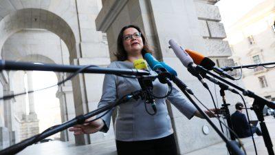 SPD: Andrea Nahles stellt sich vorzeitig zur Wahl um den Vorsitz in der Bundestagsfraktion