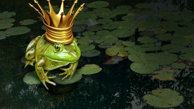 Ein bisschen Irre, ein bisschen Prinz Charming – die Grünen im Umfragehoch