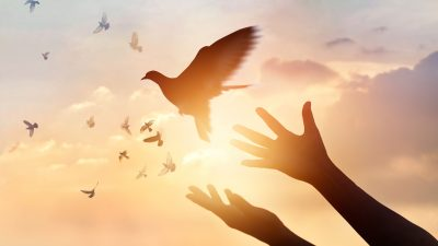 Das Schicksal der Welt hängt an einem seidenen Faden – Kriegstreiber, der 1. September und der 6. November