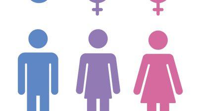 Niedersachsen: Gymnasium in Hannover eröffnet erste Unisex-Toilette für Schüler