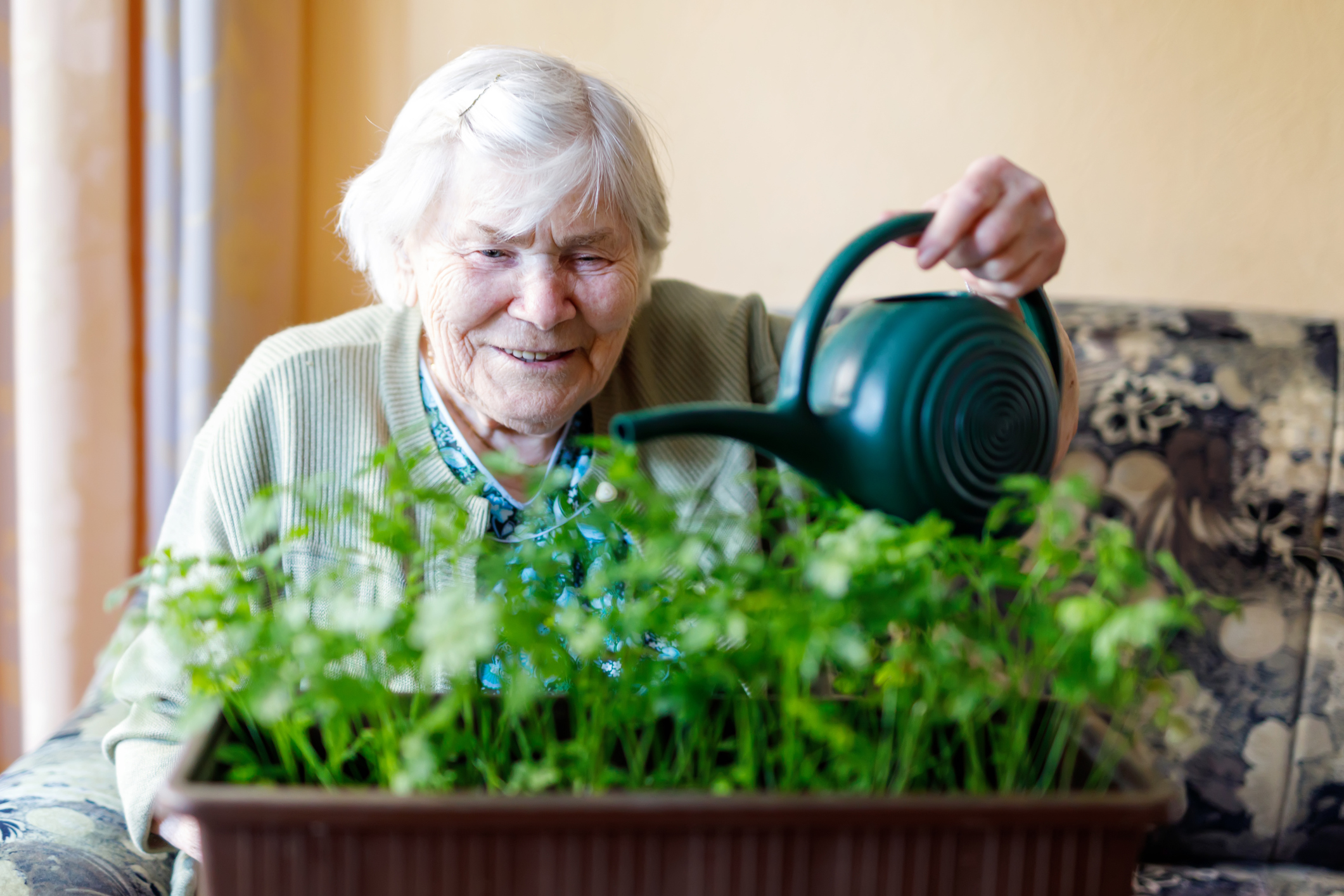 Corona-Patientin auf behördliche Anweisung in Senioren-WG zurückgebracht