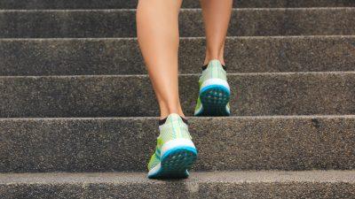 Höchster Treppenhauslauf Deutschlands: 1390 Stufen