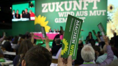 """Schröder: """"Grüne sind keine linke Volkspartei"""""""