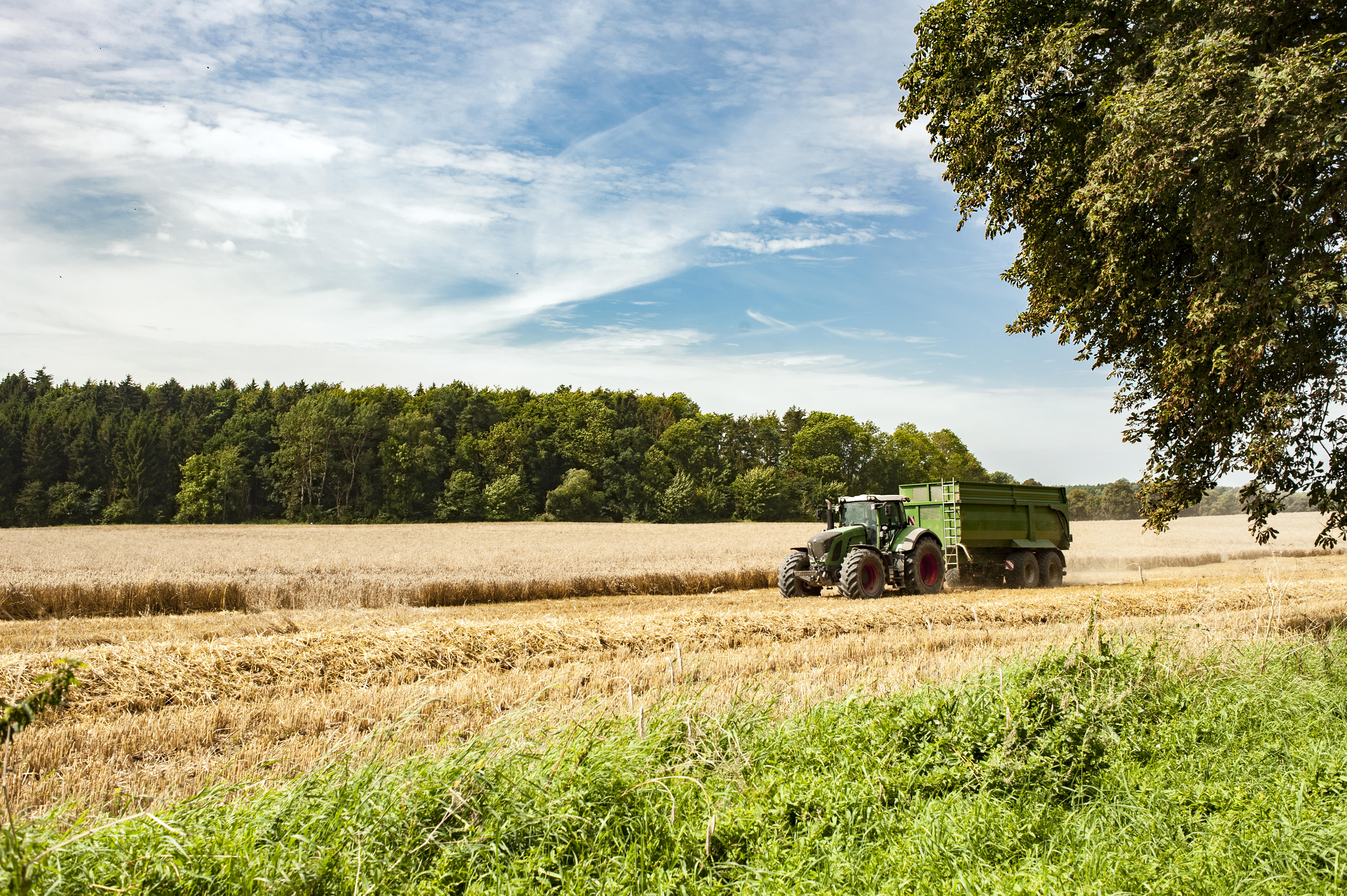 Zu viel Bio ist schlecht fürs Klima: Umstellung auf 100 % Öko-Landbau lässt Emissionen enorm steigen