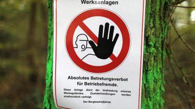 Richter entscheiden über Demonstration am Hambacher Forst