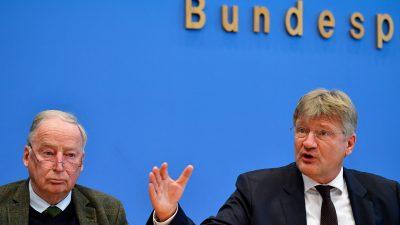 Jürgen Fritz: Aufspaltung in AfD und Flügel: Was alles dafür spricht