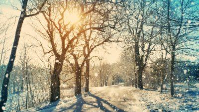 Es schneit – Von Gustav Falke