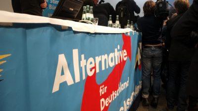 CSU-Innenpolitiker offen für AfD-Beobachtung durch Verfassungsschutz