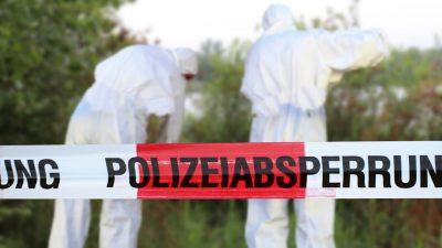 Wen soll das neue Punktsystem für kriminelle Migranten schützen? Für Mord gibts 70 Punkte – erst bei 60 Punkten droht die Abschiebung