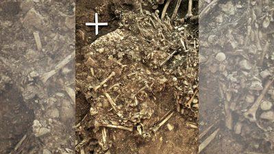 Pest-Erreger in 5.000 Jahre alten Grab in Schweden gefunden