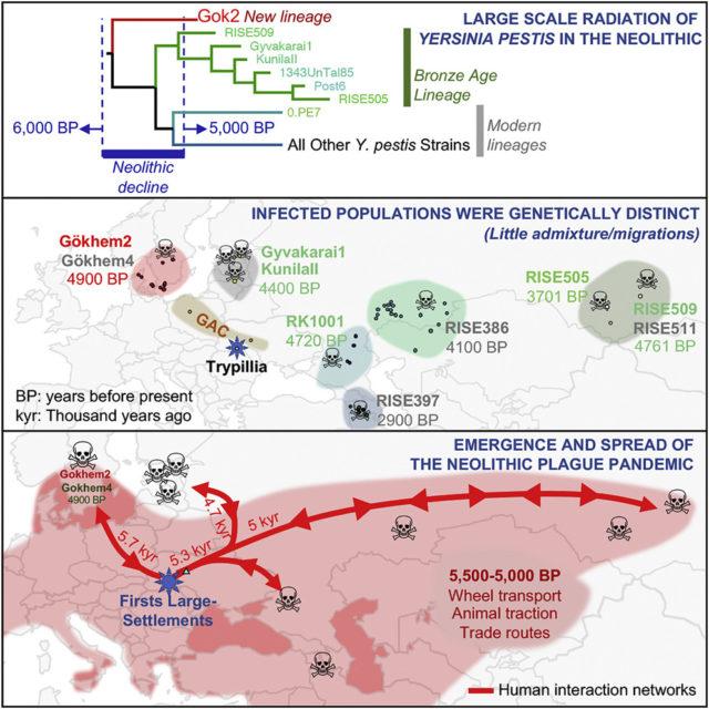 Karte zur Ausbreitung der jungsteinzeitlichen Pest