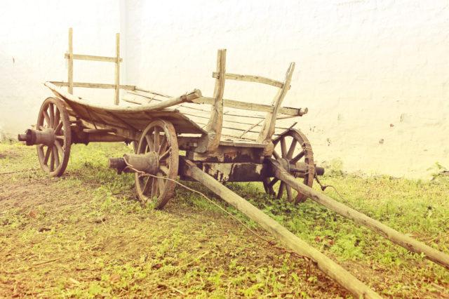 Begünstigte die Erfindung des Wagens die Ausbreitung der Pest?