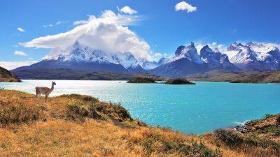 Patagonien – Die Wiege der Menschheit