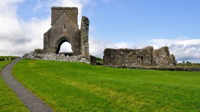 Neue Studie: Irische Druiden-Erde enthält Heilmittel gegen multiresistente Keime