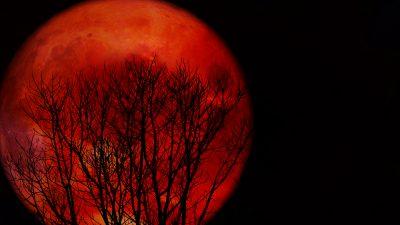 Der erste Blutmond des Jahres ist etwas für Frühaufsteher