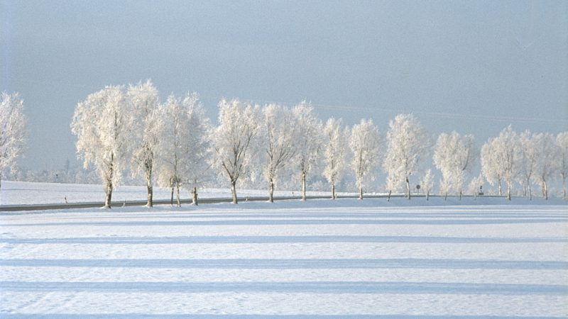 Ein Winterliches Gedicht Von Alexander Puschkin