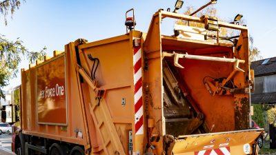 Kätzchen im Müllsack – Müllmänner werden nach panischen Hilferufen zu Lebensrettern