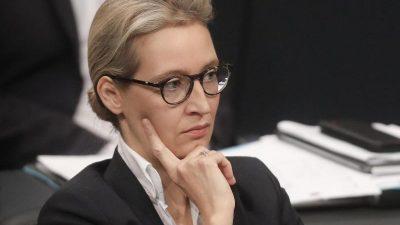"""Weidel über Nahles' """"Sozialstaatskonzept"""": Verpflichtet sich dem """"immer weiteren Schröpfen der Mittelschicht"""""""