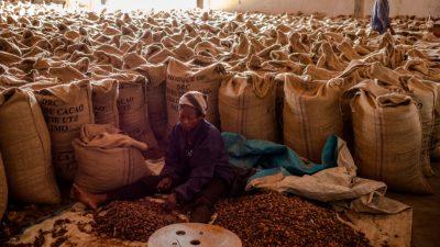 Kakaopulver im Test: Nestlé Nesquik fällt durch