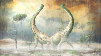 Ein Dino mit Herz im Schwanz: Neu entdeckter Titanosaurus besaß herzförmige Knochen