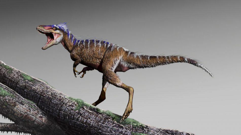 """""""Vorbote des Untergangs"""": Mini-Vorfahren geben Einblick in den Aufstieg von T. rex"""