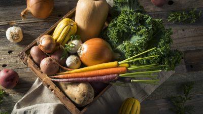 So schmeckt der Winter: Ein Leitfaden für saisonale Produkte