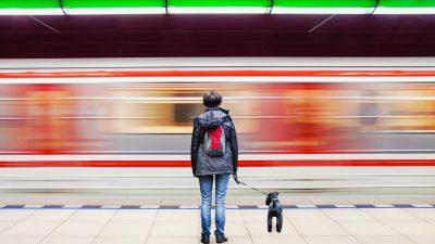 Die Bahn könnte pünktlich fahren und Geld sparen – wenn Fachleute das Sagen hätten