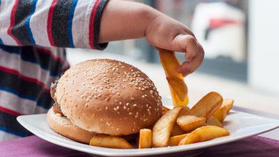 Schnitzel mit Pommes, Chicken Nuggets, Burger: Wissenschaftler kritisieren Kindergerichte