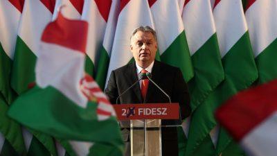 """EU-Streit um Fidesz-Partei: CDU-Politiker McAllister sieht Lage für Orban als """"sehr ernst"""""""