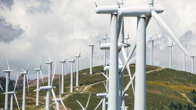 """K.-P. Krause: """"Klimaschutz geht auch ohne Wind- und Solarstrom – und wie!"""""""