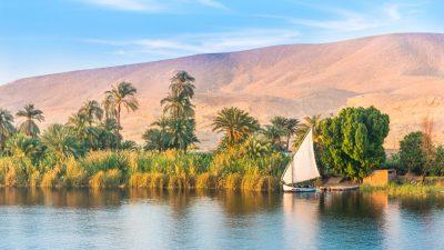 Ägyptischer Großinvestor kritisiert deutsche Entwicklungshilfe: Es sei getarnte Exportförderung