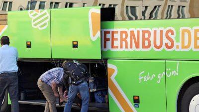 Flixbus sieht rot – Neuer Fernbus-Anbieter startet