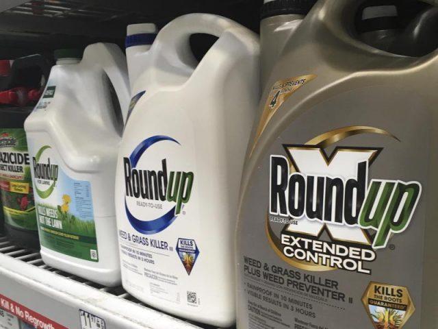 Höchstes Berufungsgericht gibt französischem Landwirt im Streit mit Monsanto Recht